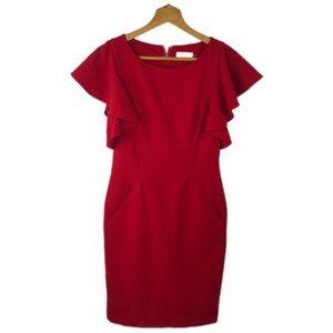 Calvin Klein Red Sheath Dress With Pockets Sz 2